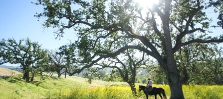 Alisal Guest Ranch and Resort